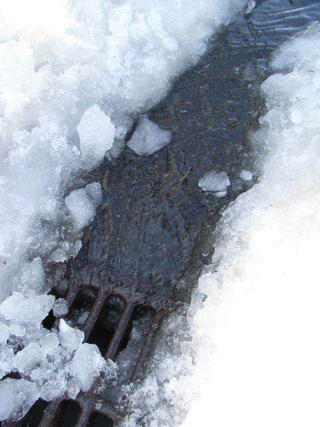 雪解け進む _c0025115_23463831.jpg