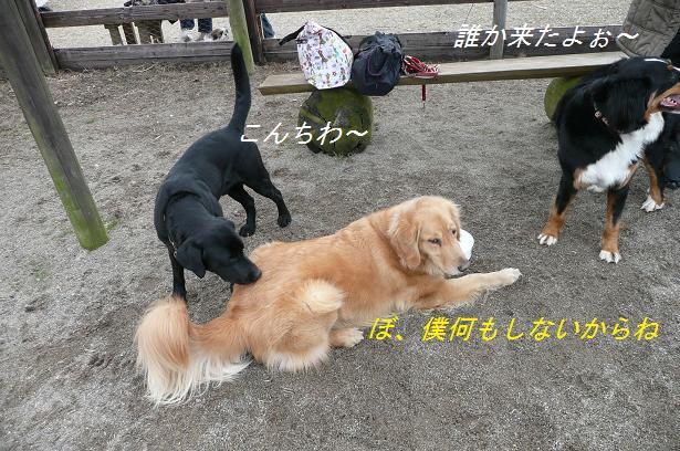 f0114128_2011919.jpg