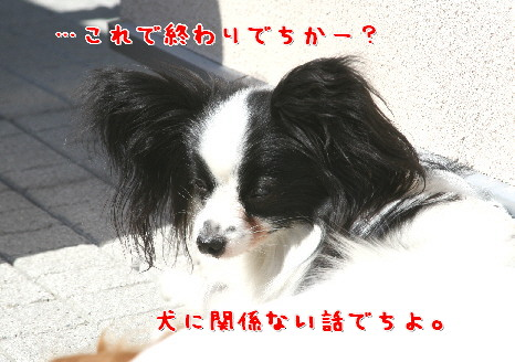 d0013149_1810228.jpg