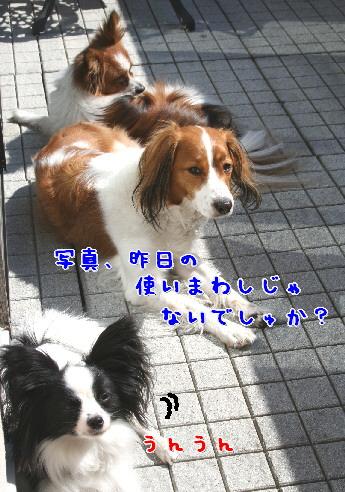 d0013149_2304639.jpg