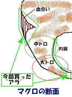 a0056654_0401148.jpg