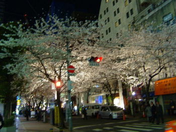 illy 日本橋中央通り店_d0029066_239682.jpg