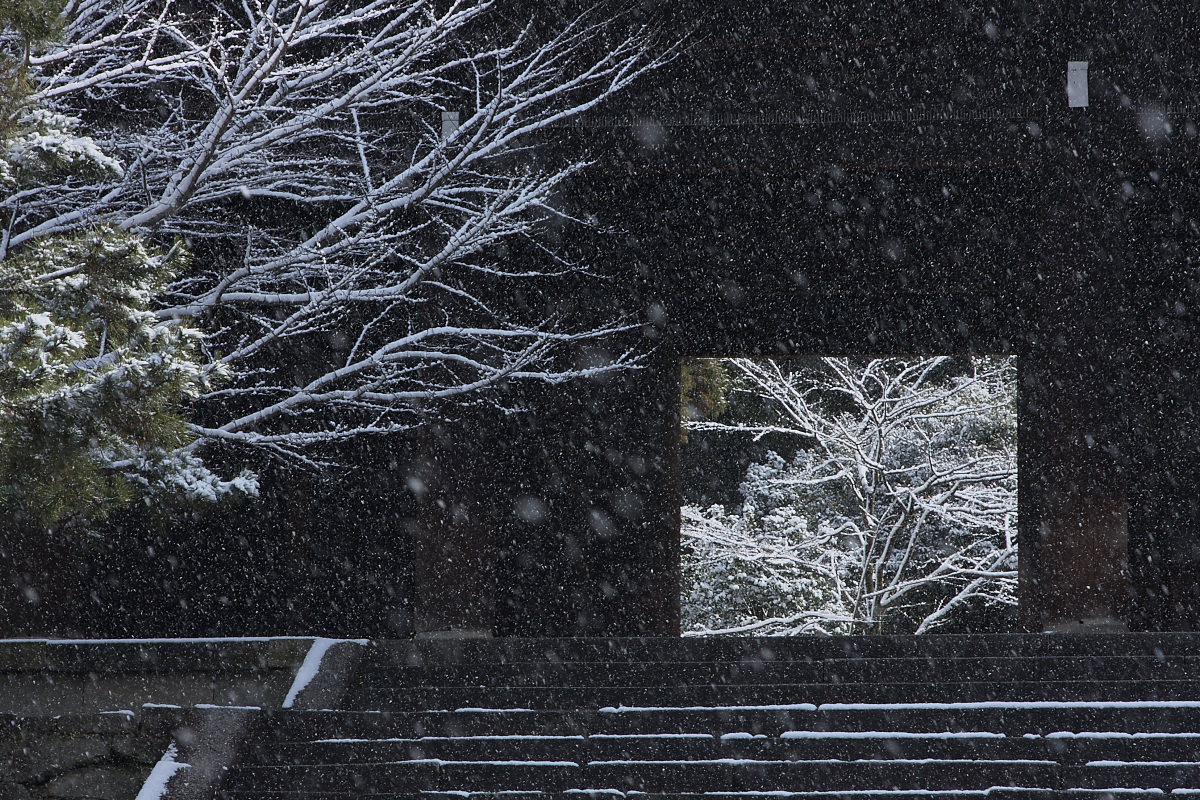 京都 雪景色 <東山> 11_f0021869_10365650.jpg