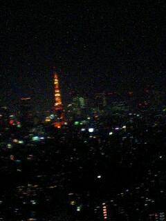ちっこいけど東京タワー★_c0038100_20494546.jpg