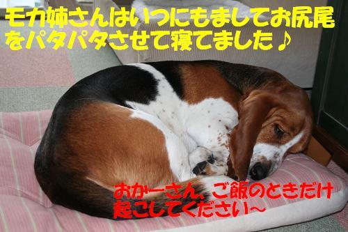 f0121712_22282988.jpg