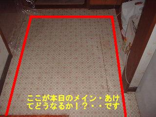 床工事・・4日目_f0031037_1852129.jpg
