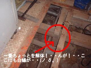 床工事・・4日目_f0031037_18522745.jpg