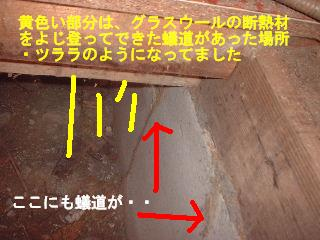 床工事・・4日目_f0031037_18524954.jpg