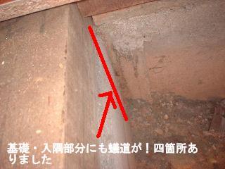 床工事・・4日目_f0031037_18531378.jpg