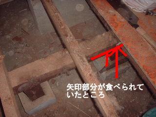 床工事・・4日目_f0031037_18532574.jpg
