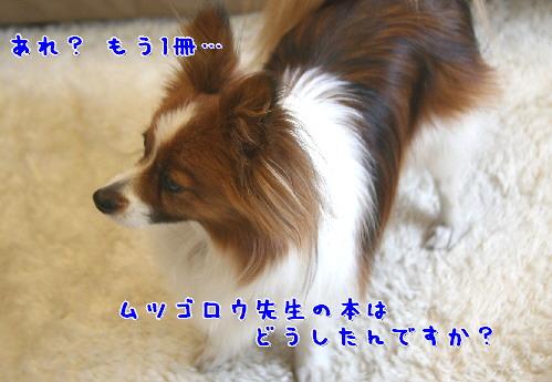 d0013149_10113570.jpg