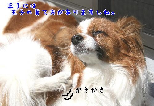 d0013149_9553850.jpg