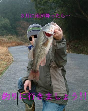 a0107060_0194593.jpg
