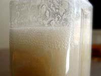 我が家の酒粕酵母の起こし方(液種・元種) 2008_c0110869_9373765.jpg