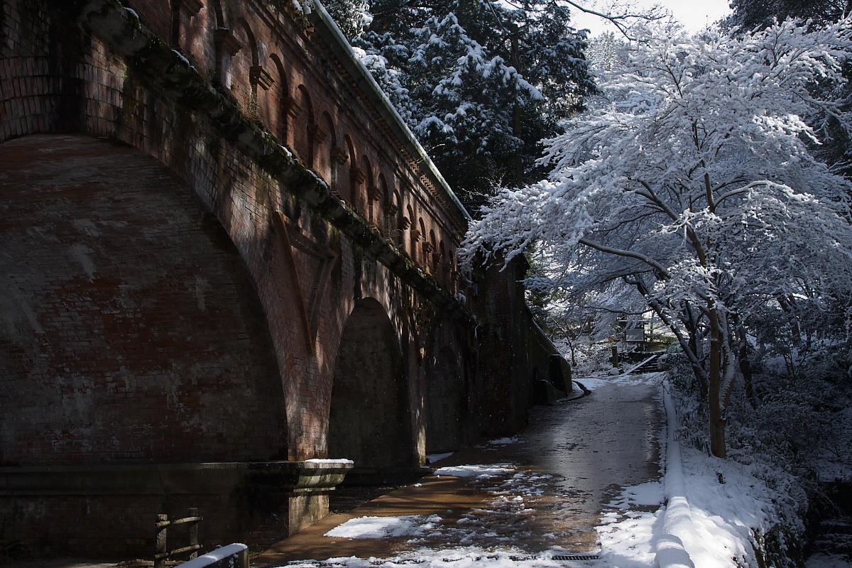 京都 雪景色 <東山> 14_f0021869_10493381.jpg