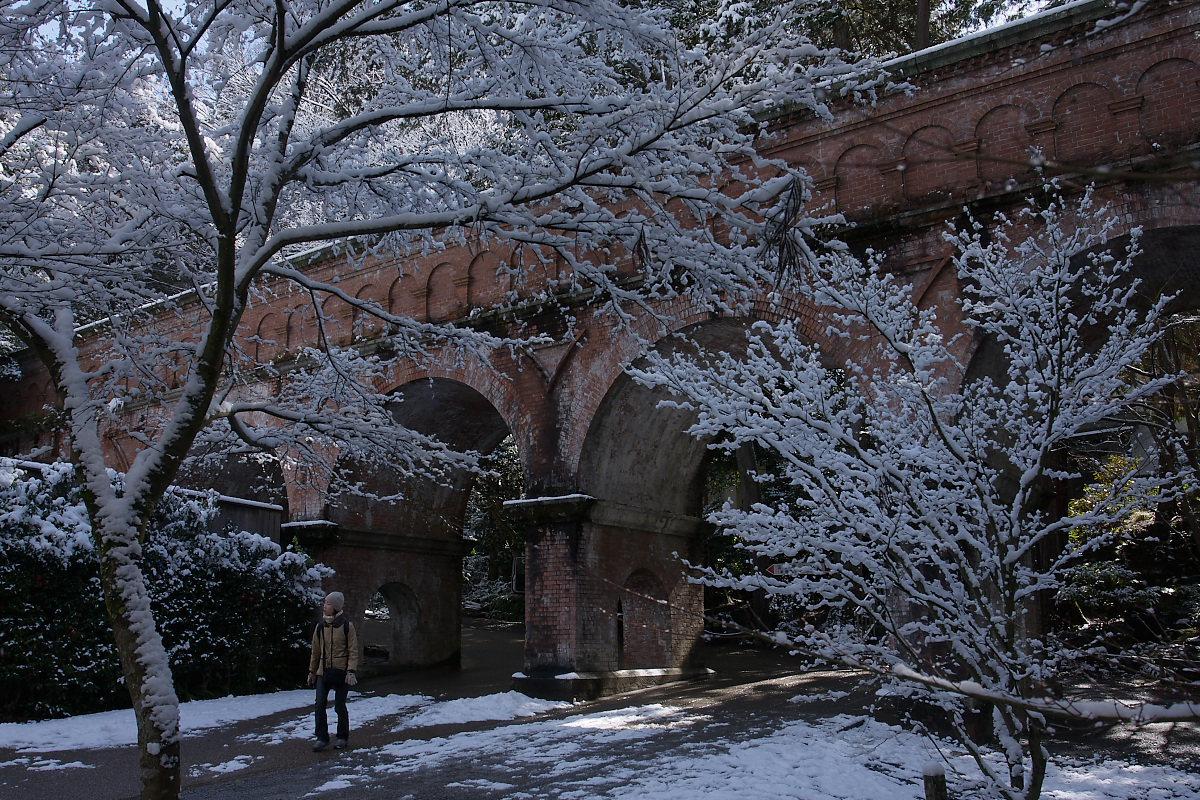 京都 雪景色 <東山> 14_f0021869_10532482.jpg