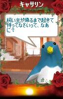 a0068693_0223199.jpg