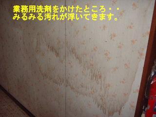 f0031037_20475314.jpg