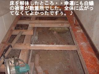 f0031037_20483177.jpg