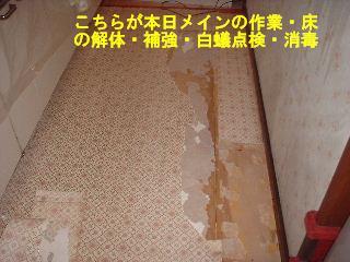 f0031037_2048577.jpg
