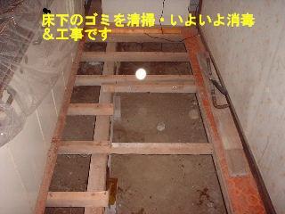 リフォーム5日目_f0031037_20494799.jpg