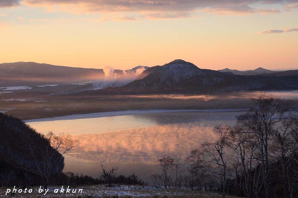 朝のネイちゃん画像より~_a0039860_1911356.jpg