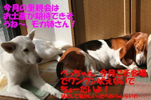 f0121712_22225613.jpg