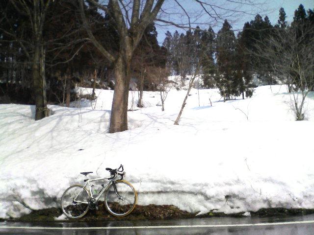 サイクリング_f0050226_1432978.jpg