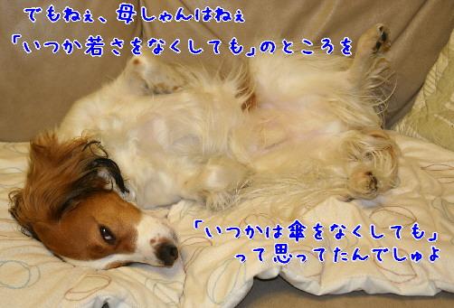 d0013149_10573685.jpg