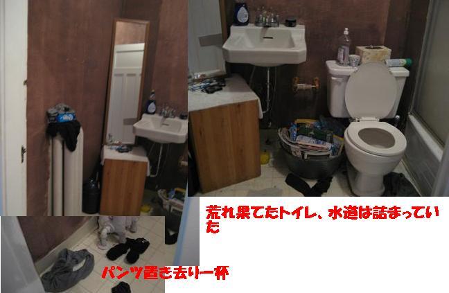 f0045068_1348211.jpg