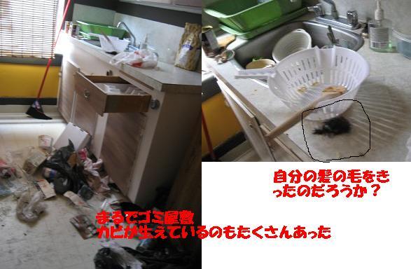 f0045068_13495087.jpg