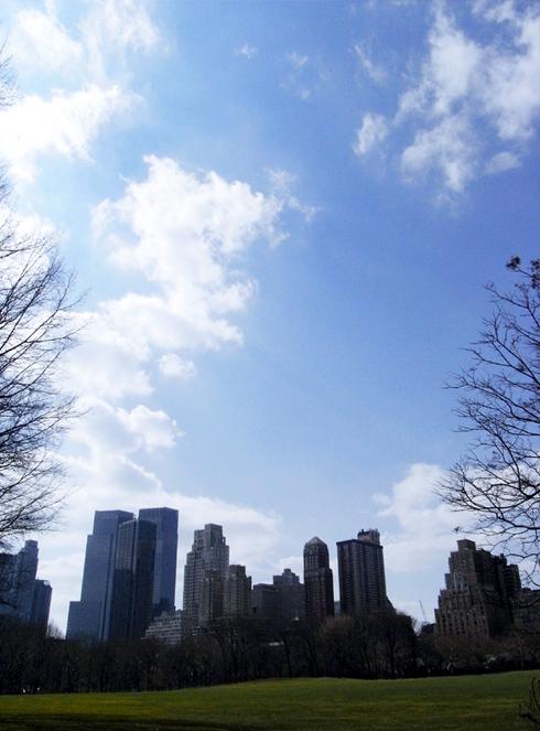 セントラルパークに近づく春_b0007805_19301555.jpg