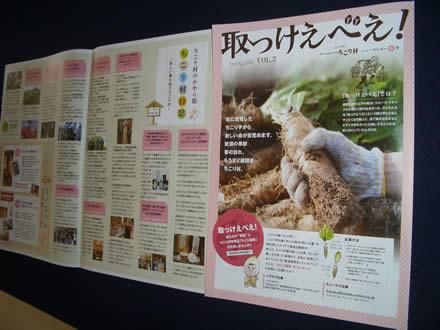 ちこり村ニュースレター「取っけえべえ!春号」_d0063218_929080.jpg