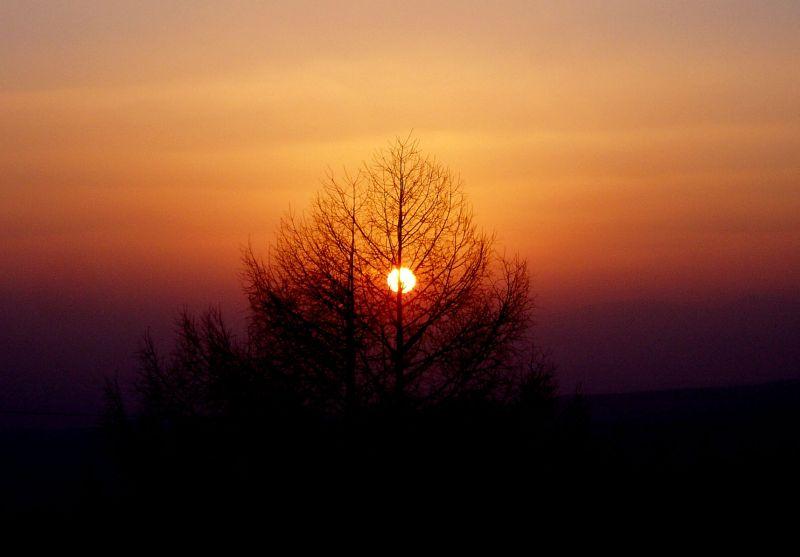 今日の夕日。 _d0102327_2253119.jpg