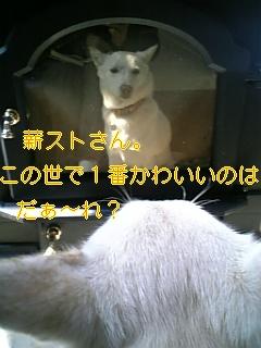 f0148927_1884454.jpg
