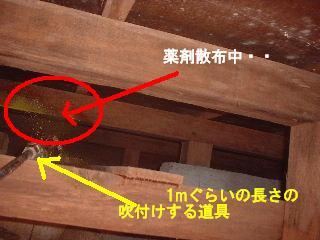 f0031037_18341250.jpg
