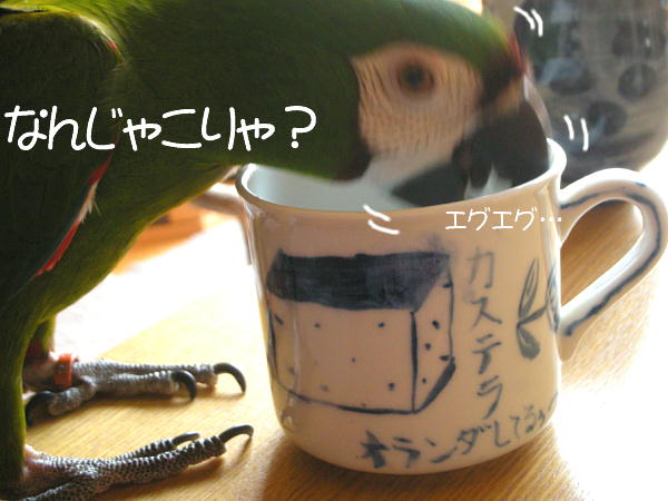 f0132055_933979.jpg