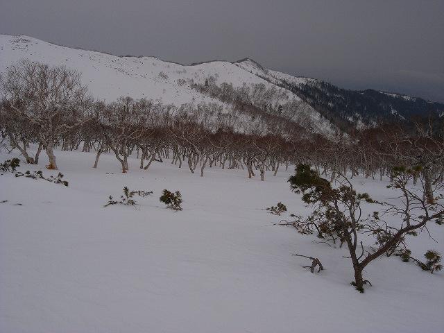 3月11日、藻琴山で山スキー_f0138096_12151950.jpg