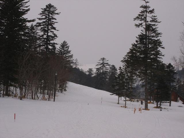3月11日、藻琴山で山スキー_f0138096_1218321.jpg
