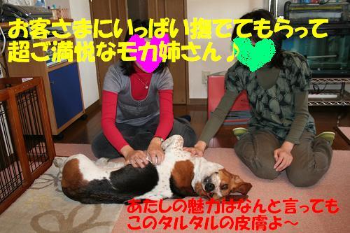 f0121712_15204441.jpg