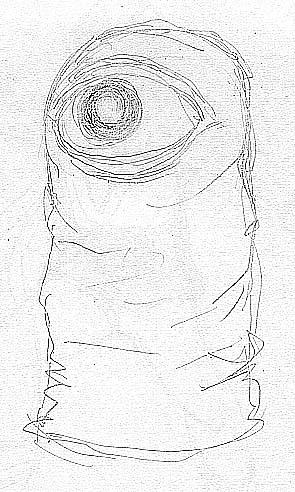 病院へ行ってきましたPart121・一ツ目アイーダの眼圧ワースト記録更新_c0040422_17212855.jpg