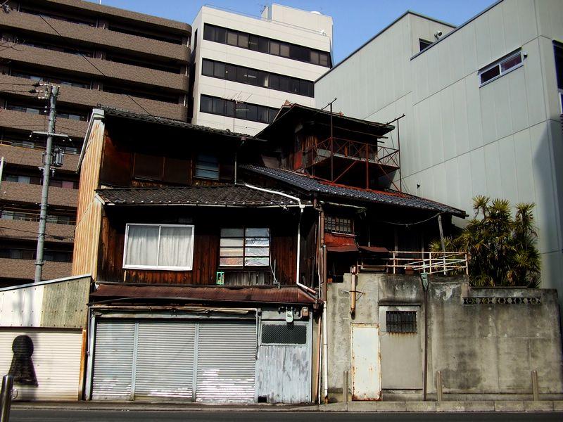 「京都・五条楽園・・・②」_d0133024_11305268.jpg