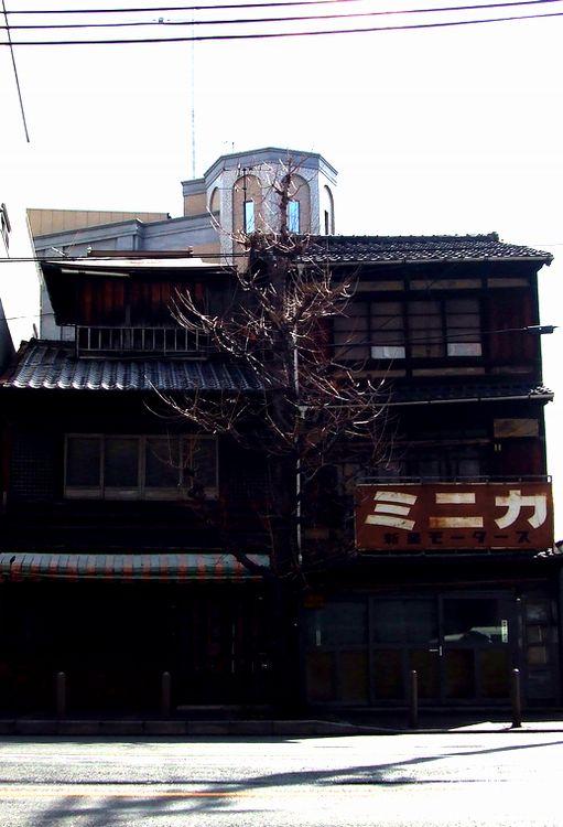 「京都・五条楽園・・・②」_d0133024_1131126.jpg