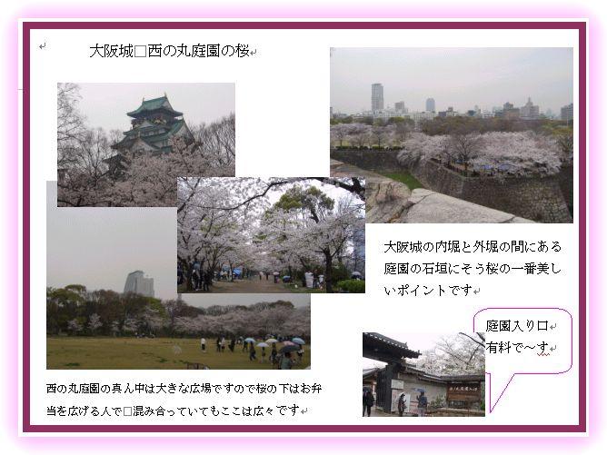 京阪神の桜ポイント_a0084343_22382163.jpg