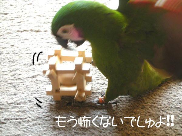 f0132055_8513849.jpg