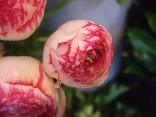 オークリーフ花の教室(山田さんの作品)_f0049672_17312330.jpg