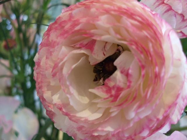 オークリーフ花の教室(山田さんの作品)_f0049672_17313840.jpg
