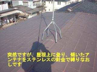 f0031037_191792.jpg