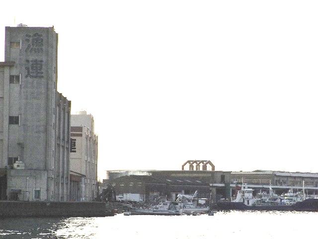 3月15日(土) 一夜明けた鹿児島で文さんは・・・_d0082944_2241192.jpg
