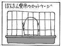 ぼんたん2&のせかぶ新隊員&お知らせ_a0064067_244384.jpg